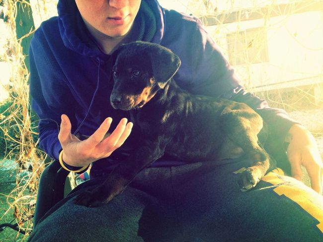 Want this puppy so bad!!