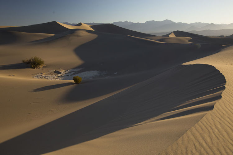 Desert Sand Dune Scenics - Nature Arid Climate Landscape Climate Sand Tranquil Scene Tranquility Beauty In Nature Environment Land Nature Non-urban Scene Sunlight Mountain No People Sky Day Physical Geography Atmospheric Focus On Shadow Isolation