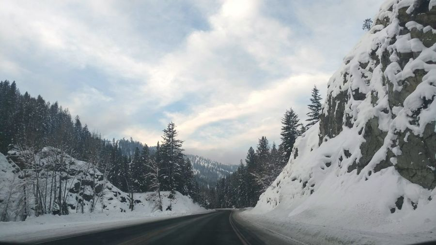 Tree Mountain Snow Landscape Winter Cold Temperature Forest Road No People Outdoors Nature Sky Backgrounds Beauty In Nature Scenics Landscape Roadsidephotography Road Trip! Traveling Travel