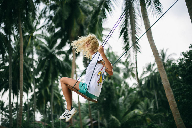 Low angle view of swing on palm tree