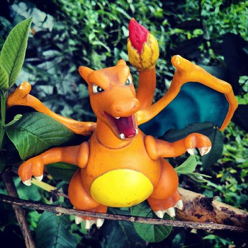 I choose you.. CHARIZARD! Toyphotography Pokémon Pokemonphotography Pokemonfigure gameboy