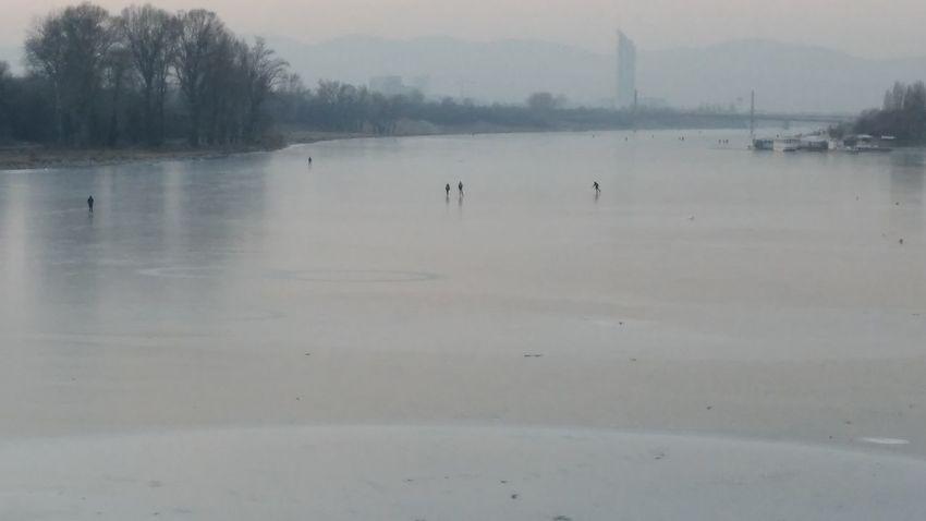 Donauinsel Eislaufende Leute Iceskateing Cold Temperature Ice Frozen Lake Frozen Frozen River Frozen Water Snow Covered Snowsports Winter Sport