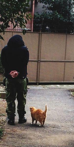 ニャンコと私 にゃんこ 猫 Cat 上野