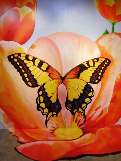 Snap Everywhere My Shot  Traveling Huahin The Venezia 3d Art Gallery Bright Wall Art Butterfly