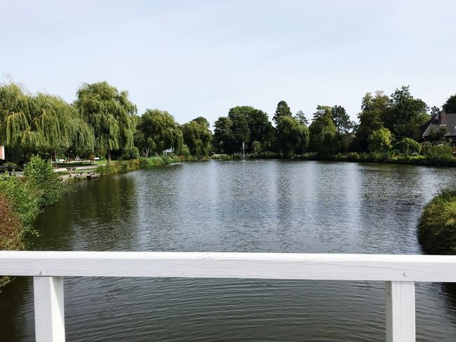 Park View... Beautiful Day Beautiful Nature Nice View Walking Around Tranquility Lake View Bridge White Water Tree Plant Sky Nature Beauty In Nature Day Tranquility Scenics - Nature No People Growth Clear Sky Tranquil Scene Lake Outdoors Railing Green Color Architecture