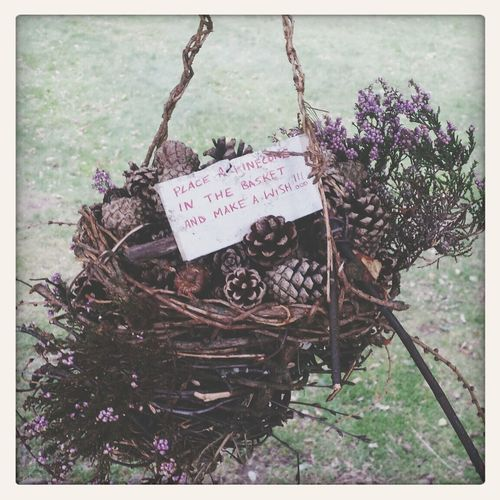 Druid's Secret Place Pagan Derbyshire