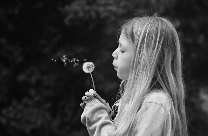 Side View Of Girl Blowing Dandelion
