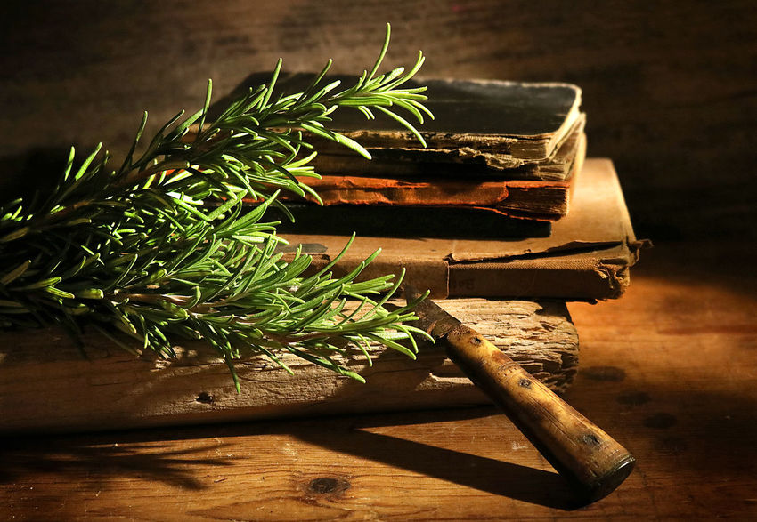 Herb Herbs Vintage Kitvhen Nostalgia Wood Table Plant Country Life Rosemary