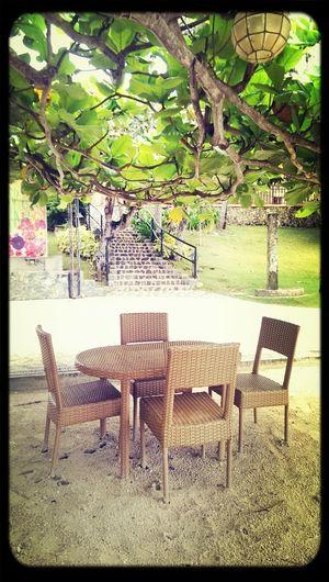 Amazing sunlight. Let's go have fun! Beautiful Surroundings Green It's More Fun In Bohol Play Time Lemon Lime By Motorola