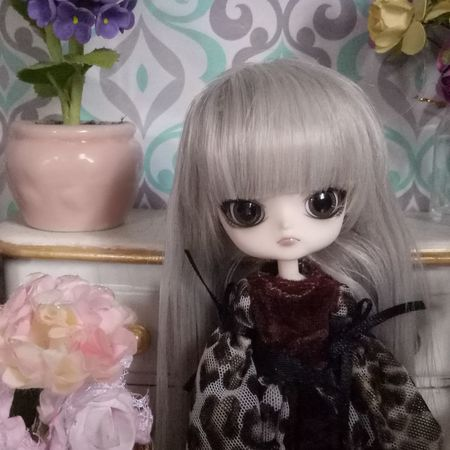 .got.a.new.doll.for.my.collection😂😂😂 Taking Photos DollCollector Dollified Pullipdolls Dal Dollsphotography Dollphotogallery Dollface Dolledup Pullip