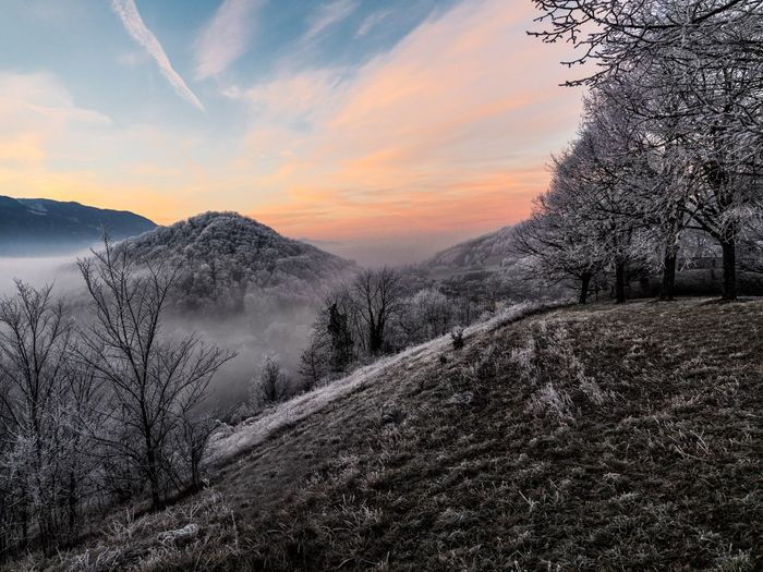 Scenic view of snow covered landscape during sunset