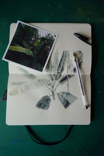 High angle view of photograph and drawing on table