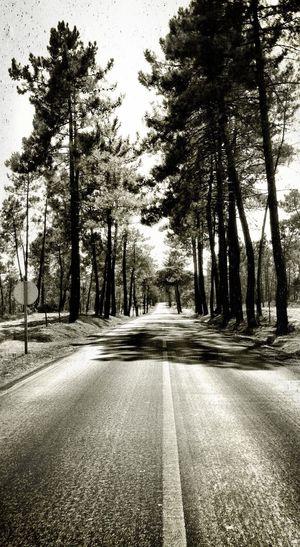Embrace Your Road Crossroads Paths Roads Fun Roads