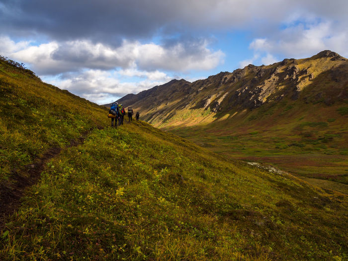 A group of backpackers hiking along a footpath through autumn tundra in a lush mountain valley, part of Chugach State Park, Alaska. Beauty In Nature Mountain Scenics - Nature Landscape Nature Outdoors Chugach State Park Alaska Adventure Tundra Autumn Valley Mountain Range Hikers Hiking Backpacking Camping Footpath Trail Leisure Activity Cloud - Sky Activity People Travel Destinations Hike
