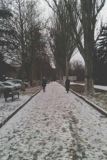 Winter time ^^