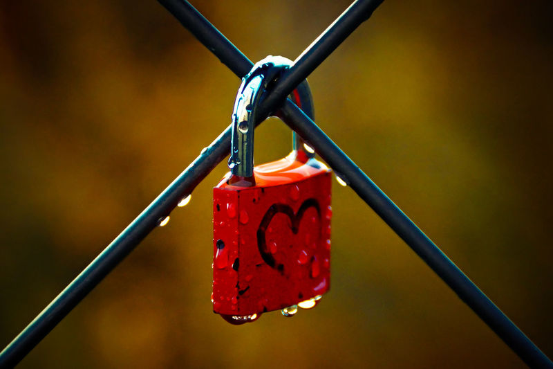 Close-Up Of Love Lock On Metal Fence