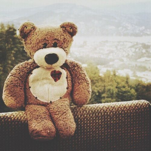 Scuffles The Traveling Bear Teddy Bear Stuffed Toy Toy No People Day Close-up Sky Mountain Switzerland