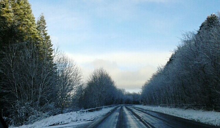 Winterwonderland Trees Snowy Pretty Drive Beautiful Sky ⛅ Colours Of Winter Ireland Monea Subtle Beauty EyeEm Nature Lover EyeEm Nofilter Country Road Country Life Mobile Photography Mein Automoment