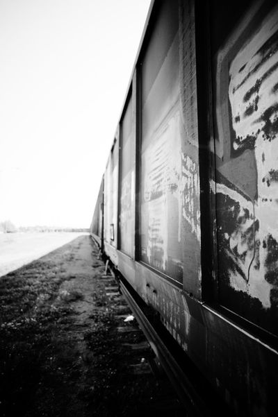Canon Canon Eos 1Ds Trainyard Black And White