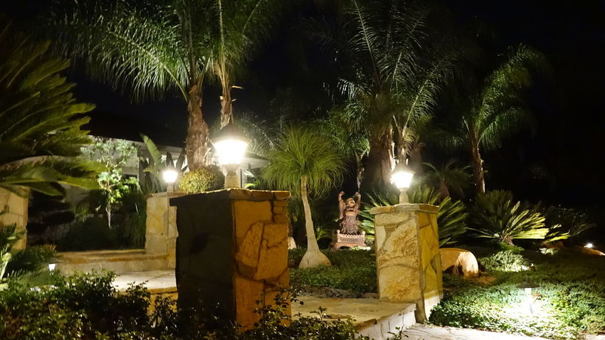 Taking Photos of landscaping that our company installed. lLandscaping is my passion! Photography Landscape_photography Gardening EyeEm Best Shots Eye4photography  EyeEm Landscape_lighting Lighting Ctai Pacific Greenscape