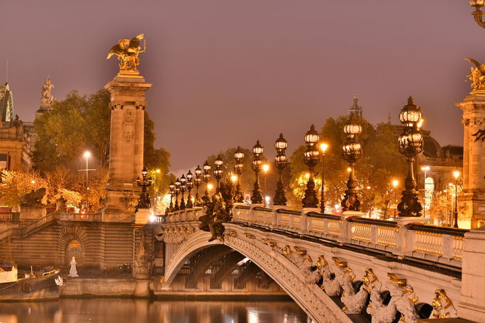 Bridges Paris Paris, France  Pont Alexander III Pont Alexandre III Seine Seine River Architecture Bridge Bridgeporn Building Exterior Built Structure City Illuminated Large Group Of People Lifestyles Night Outdoors People Real People Sky Tree