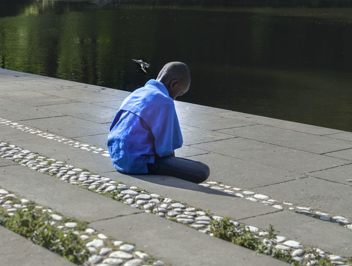 Berlin Bird Blue Boy Charlottenburg  Lake Loneliness Schlosspark
