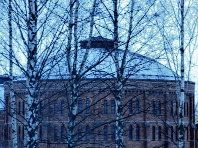 Tree Bare Tree Architecture Building Exterior Built Structure Low Angle View Sky Outdoors Day No People Nature Branch Snow Trees Branches Urban Landscape Travel Destinations City Adapted To The City
