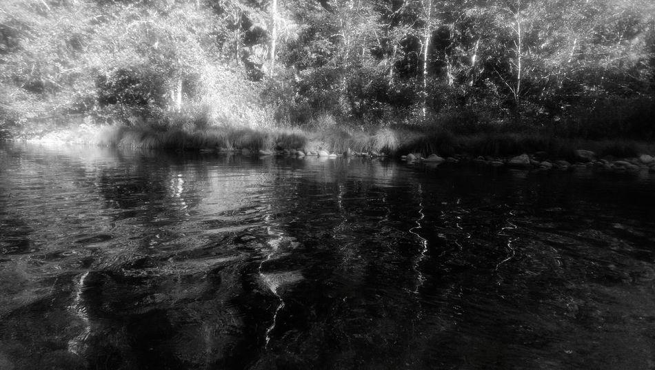 Molalla River B&W beauty loving life First Eyeem Photo