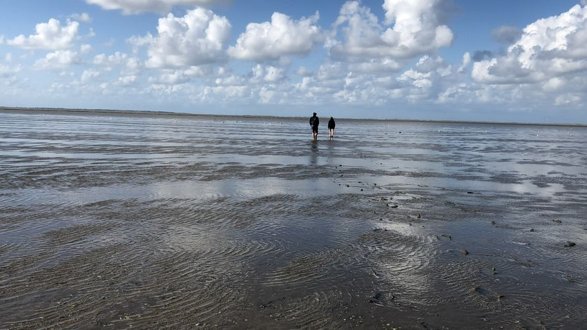 Suchen  Nordsee Allein Im Watt Water Sky Sea Cloud - Sky Beach Land Two People Real People Horizon Over Water Leisure Activity Day Horizon Beauty In Nature Men Nature People Outdoors