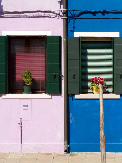Old house facade in Burano/Italy Architecture Attraction Attractions Blind Blinds Blue Burano Colorful Famous Place House Facade House Facades Island Italy Jalousie Old Purple Shutter Shutters Tourist Destination Tourist Destinations Travel Destinations Village Violet Window Windows