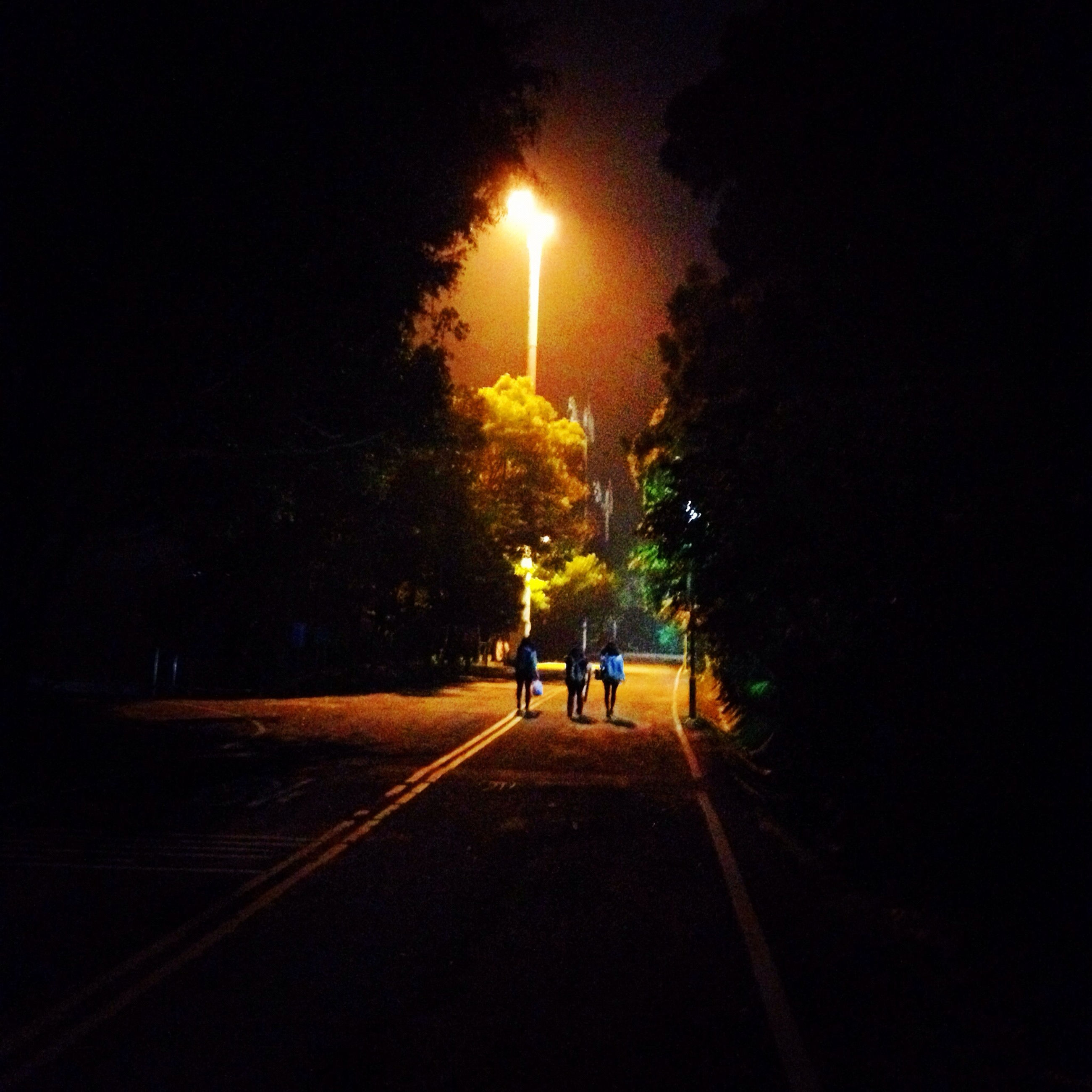 tree, the way forward, street light, illuminated, walking, silhouette, night, men, road, lighting equipment, street, lifestyles, diminishing perspective, sky, leisure activity, rear view, transportation, nature, full length