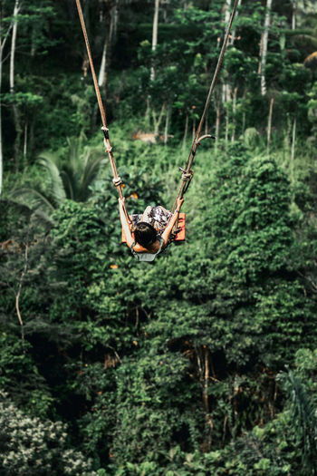 Swing hanging on rope in forest