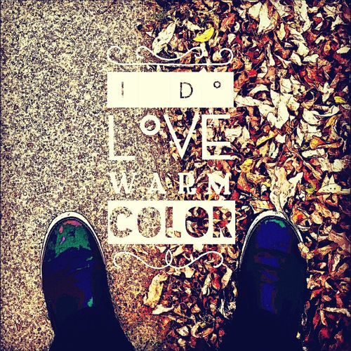 Reason for why I love this season the most Autumn Autumn Leaves Autumn Colors Typography