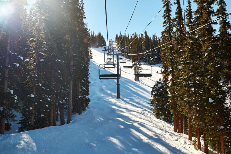 Ride along Tree Sunlight Cold Temperature Nature Beauty In Nature Day Sky Snow Growth Outdoors Winter Water Nature Landscape Non-urban Scene Tree Travel Reimerpics Colorado Mountain Coppermountain Pine Tree Skiing
