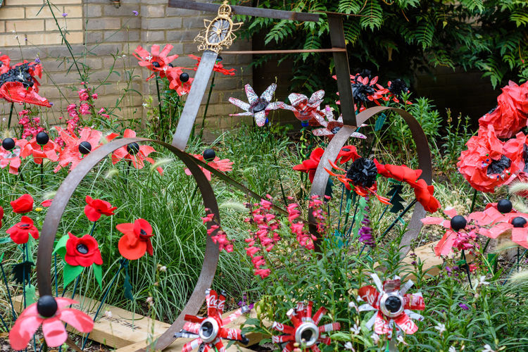 Remembrance display created with recycled materials Artificial Flower War Memorial Artificial Artificial Flowers Bicycle Flower Flowering Plant Growth Plant Poppies  Recycked Recycled Art Recycled Materials Recycled Plastic Remembrance Remembrance Poppy