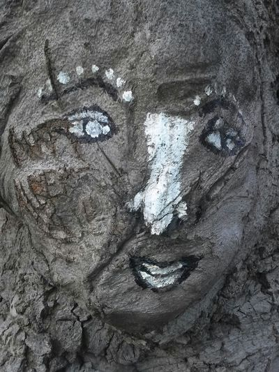 Tree Art Graffiti Street Art
