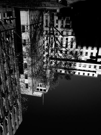 Creative Light And Shadow Building Tree Blackandwhite Blackandwhite Photography