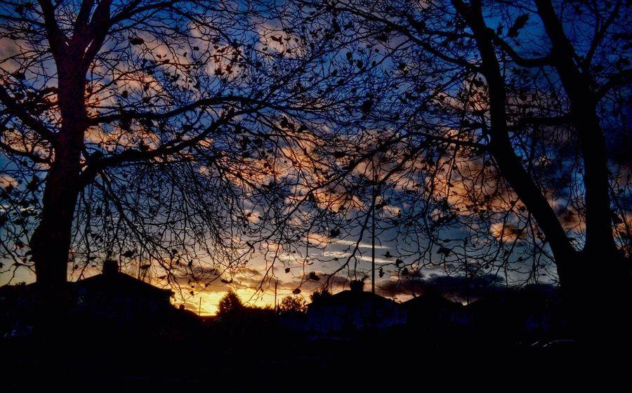 November sunset. Taking Photos Cloud_collection  Clouds And Sky Novemberphotochallenge November Sunset Suffolk Sunset Silhouettes Sunset_collection Sunset Showcase: November