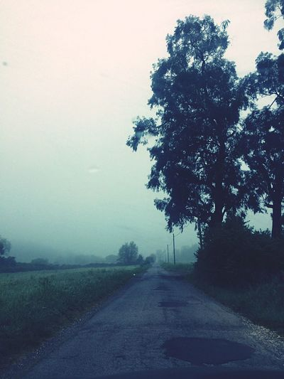 On The Road Rome Italy Country Countryside Fog Morning The Way Forward Tree Road Transportation Nature Sky Tranquility Outdoors No People Landscape Day Scenics Tranquil Scene Beauty In Nature Springtime Lonely Early Morning