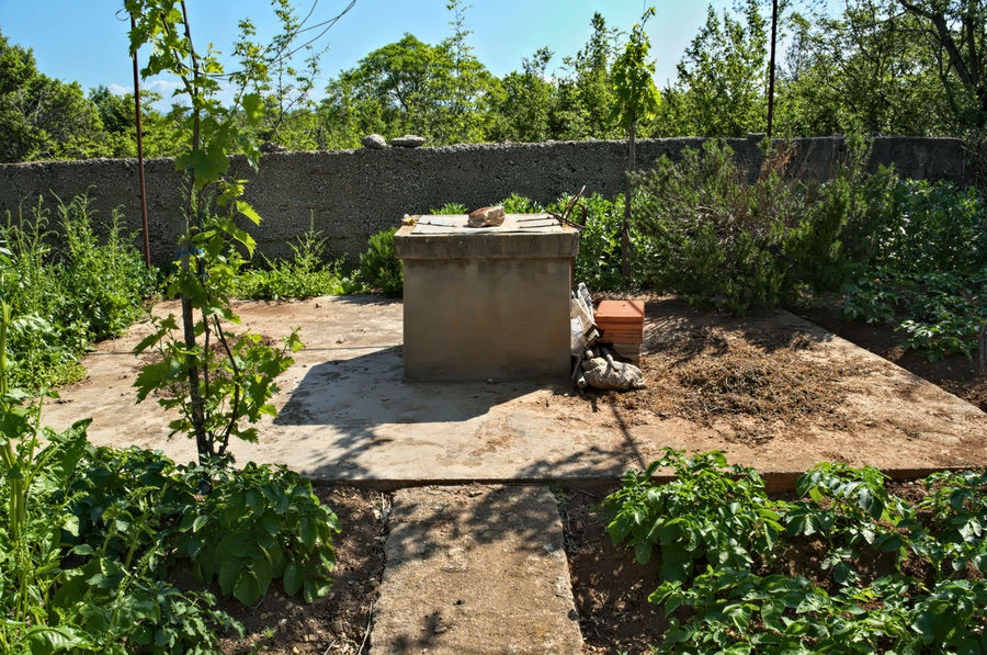 Water well and small garden around it Container Growing Cultivating Day Farming Garden Growth Nature No People Outdoors Plant Preserving Sky Sunlight Tree Vegetables Water Water Well