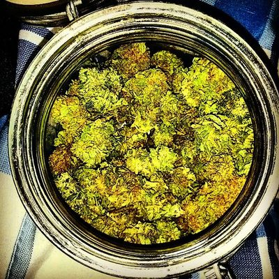 Doobie Sent This jar of inspiration out to all who enjoy it. Oso100 SmokeSuffa SmokersOnly SupaFly