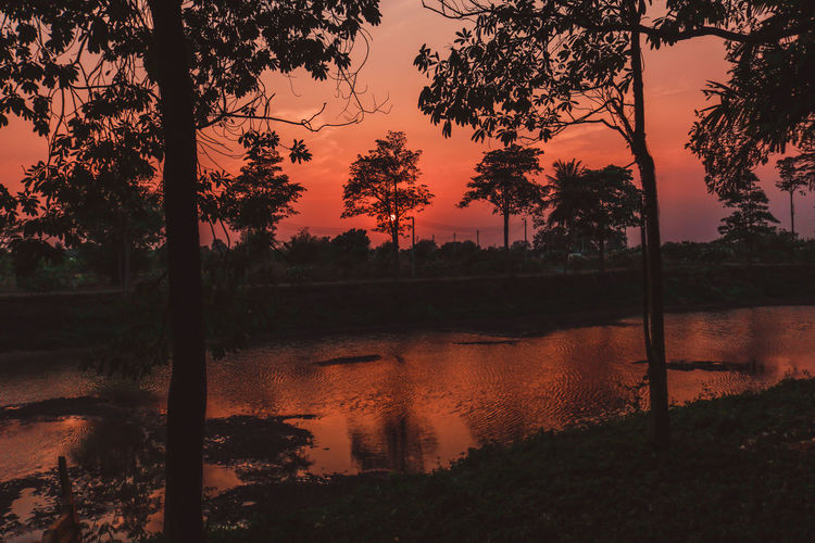 Scenic view of lake and silhouette trees against orange sky during sunset
