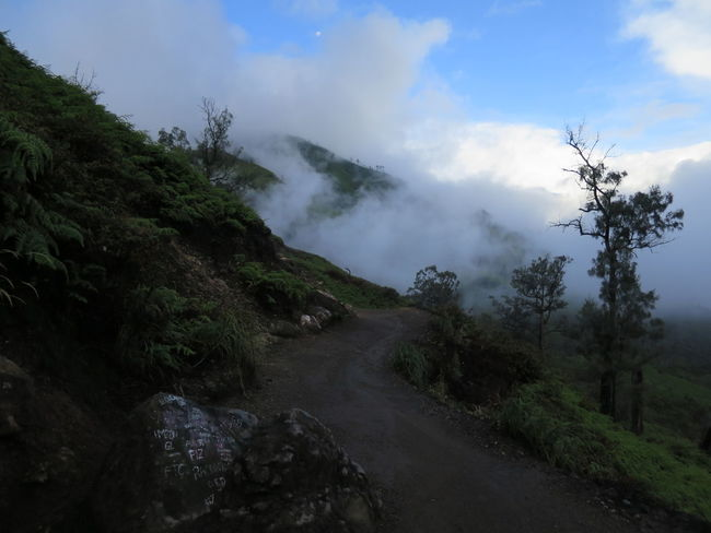Hike to the Ijen Crater through Clouds Clouds And Sky Hike Hikerslife Hiking Path Ijen Crater Ijen Crater Landscape IjenCrater Ijencreater IjenMountain Ijentravel Landscape Mountain Nature Outdoors Roaring Clouds Silhouette Silhouette Photography Silhouettes Tree Silhouette Trees Trees And Sky Upcoming Clowds Winding Road