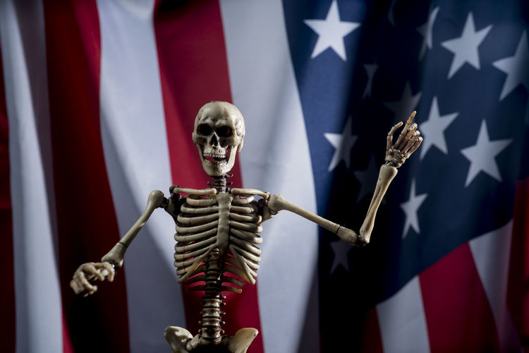 Close-Up Of Human Skeleton Against Flag