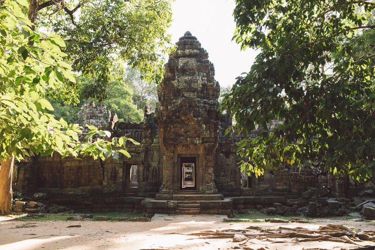 Siem Reap Cambodia Angkor Religion Built Structure Architecture Place Of Worship Belief Spirituality Building Tree Plant History The Past Travel Tourism Ancient Nature Building Exterior Travel Destinations Day No People Outdoors Ancient Civilization