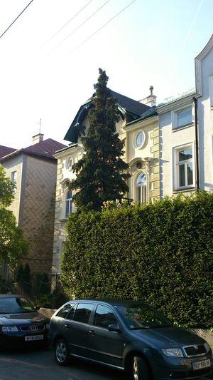 Häuser 18.Bezirk Wien Grün In Der Stadt