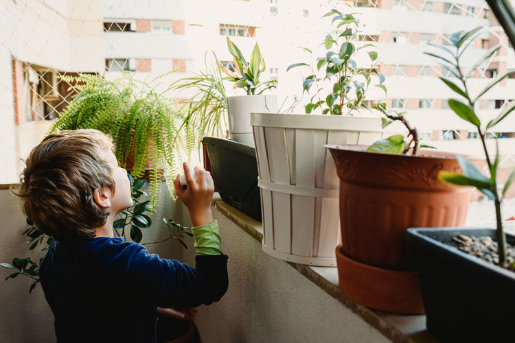 Boy spraying water over potted plants in balcony