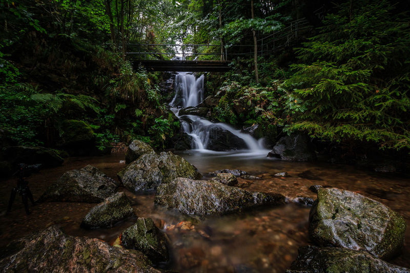 Todtnauer Wasserfälle Beauty In Nature Day Forest Idyllic Long Exposure Moss Motion Nature No People Outdoors Rock - Object Scenics Tranquil Scene Tranquility Tree Water Waterfall