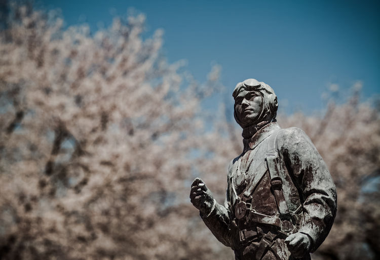 Blossom Cherry Trees Day Dramatic Dreaming Focus On Foreground Hanami Japan Japan Photography Kamikaze Low Angle View Memorial Military Military Life No People Outdoors Sakura Sculpture Sky Statue