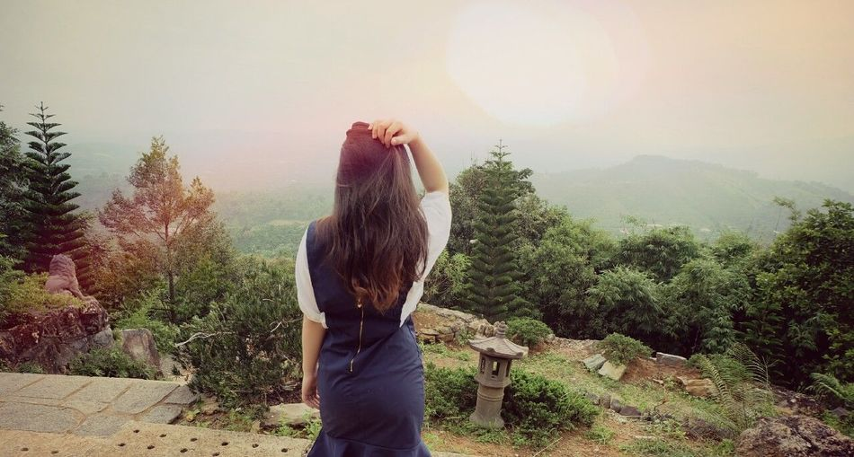 Linh quy pháp ấn Canhdep Linhquyphapan Long Hair Rear View Tree Sunbeam Day Nature Baolam